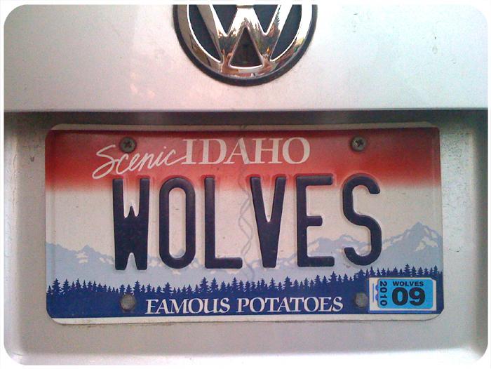wolvesplate